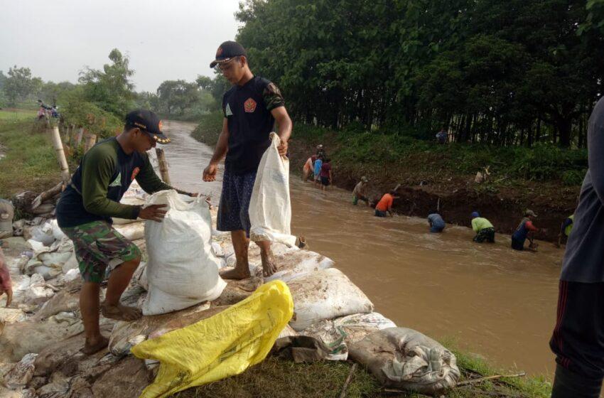 Tanggul Sungai Mojoagung Jebol, Bagana Prambon Lakukan Gerak Cepat