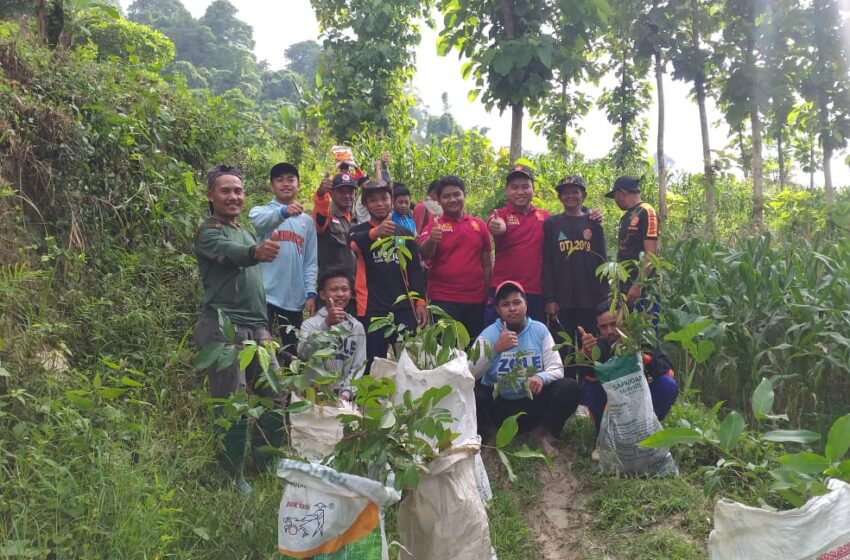 Gelar Penghijauan, GP Ansor Ngluyu: Kita Jaga Alam, Alam Jaga Kita
